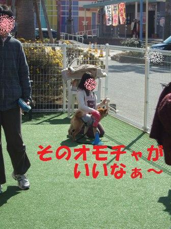 blog6880.jpg