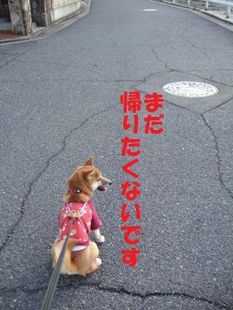 blog6922.jpg