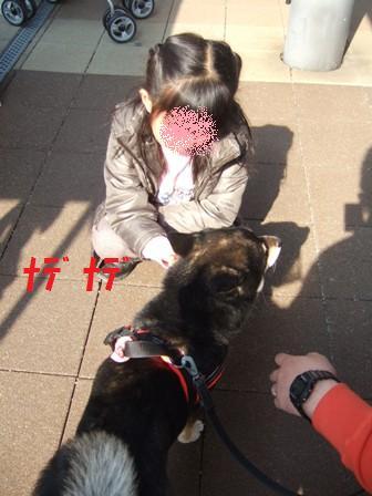 blog6937.jpg