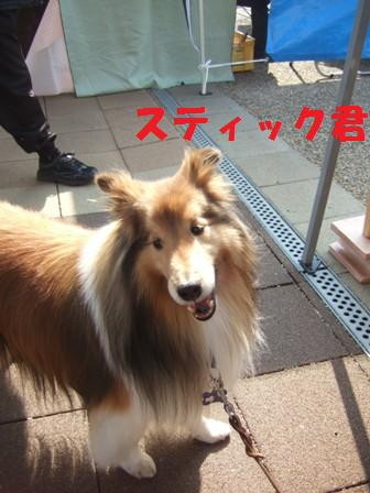 blog6938.jpg