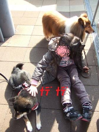 blog6941.jpg