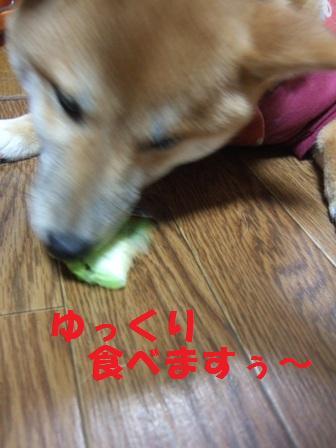 blog6950.jpg