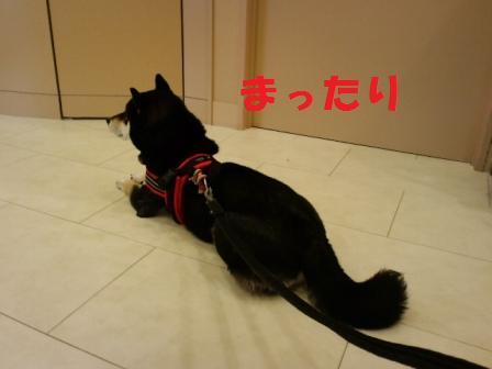 blog6961.jpg