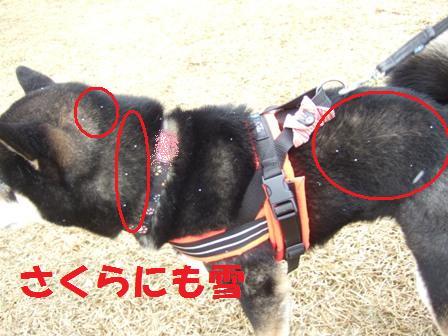 blog7001.jpg