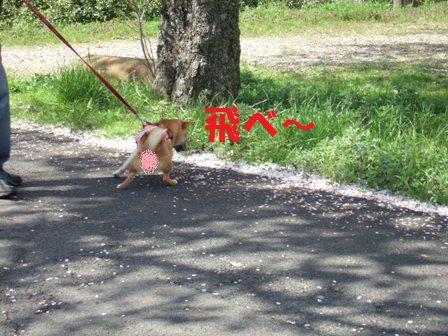 blog7008.jpg