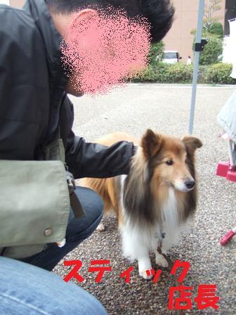 blog7073.jpg