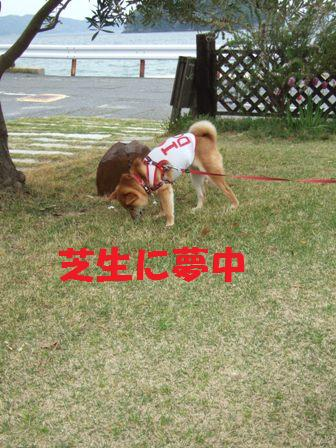 blog7085.jpg