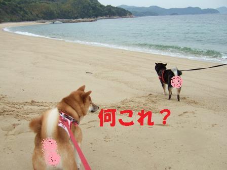 blog7087.jpg