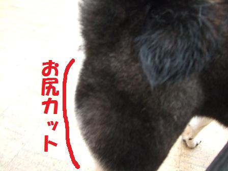 blog7122.jpg