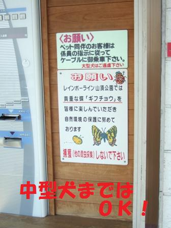 blog7150.jpg
