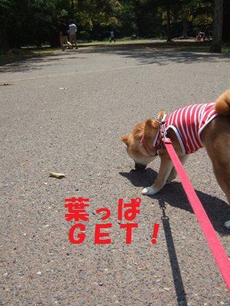 blog7169.jpg