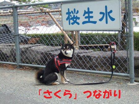 blog7198.jpg