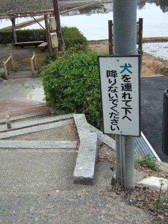 blog7199.jpg