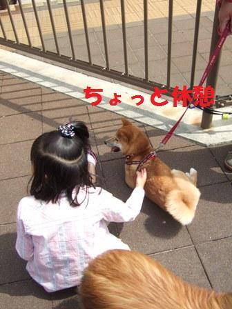 blog7320.jpg