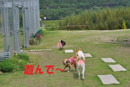 blog7363.jpg