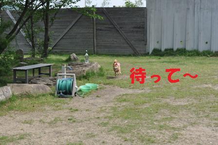 blog7367.jpg