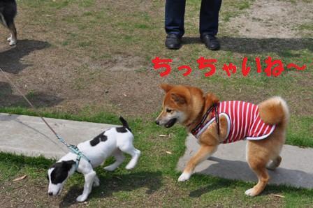 blog7369.jpg