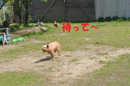 blog7376.jpg