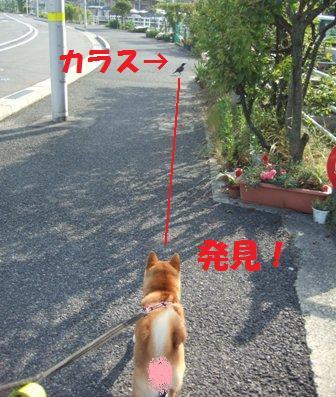 blog7401.jpg