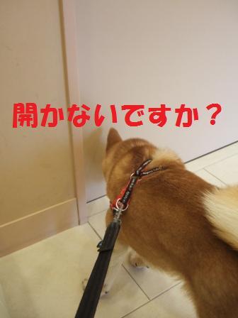 blog7410.jpg