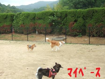 blog7432.jpg