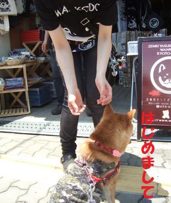 blog7474.jpg
