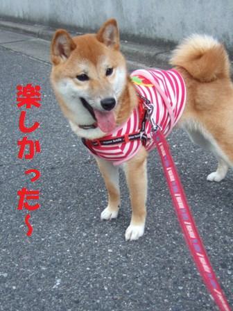blog7494.jpg