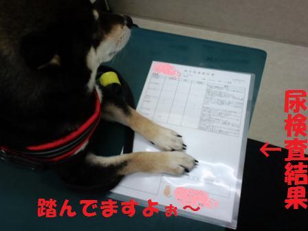 blog7499.jpg