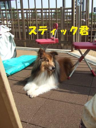 blog7512.jpg