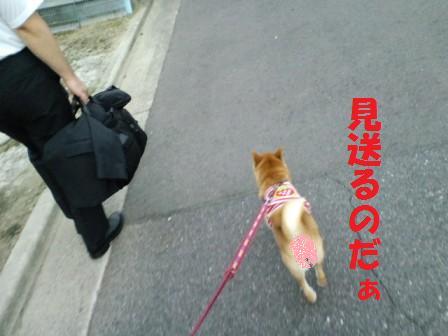 blog7524.jpg
