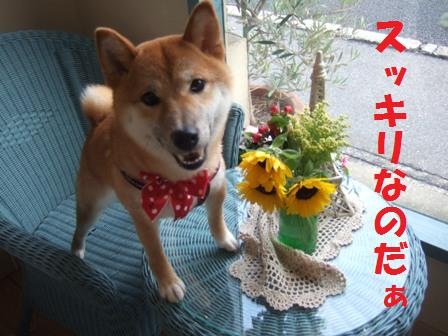 blog7546.jpg
