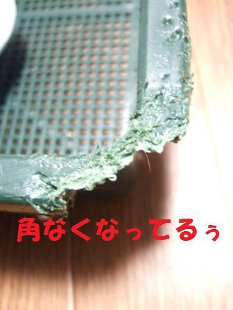 blog7554.jpg
