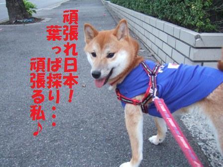 blog7569.jpg