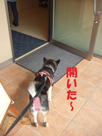 blog7576.jpg
