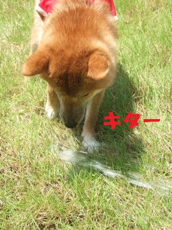 blog7604.jpg
