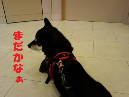 blog7612.jpg