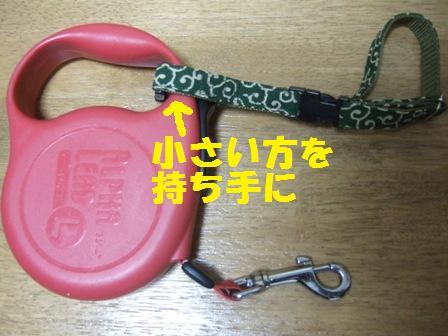blog7638.jpg
