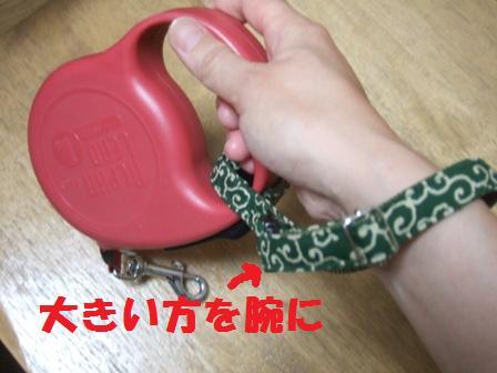 blog7639.jpg