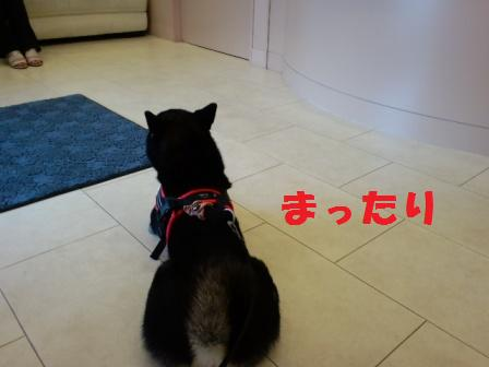 blog7646.jpg