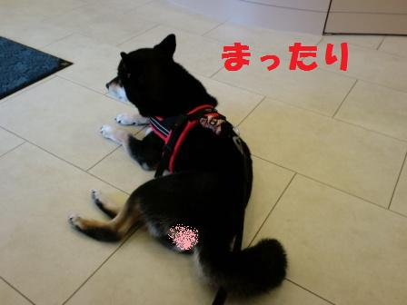 blog7647.jpg