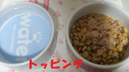 blog7662.jpg
