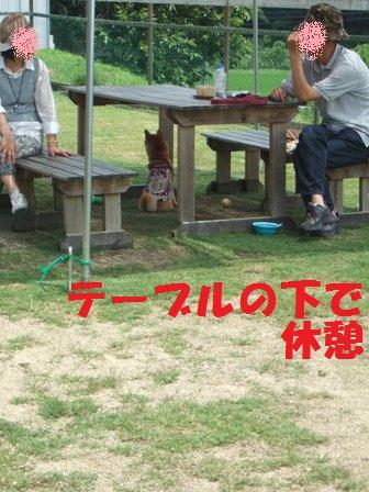 blog7670.jpg