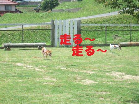 blog7678.jpg