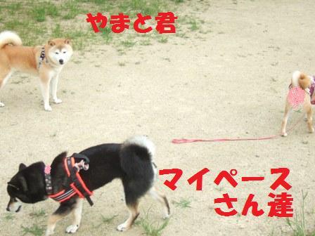 blog7685.jpg