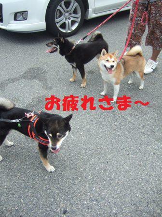 blog7788.jpg