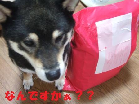 blog7803.jpg