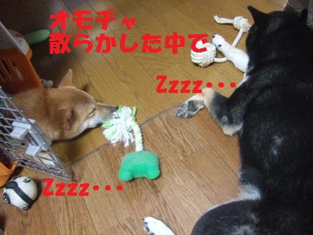 blog7809.jpg