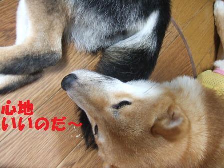 blog7885.jpg