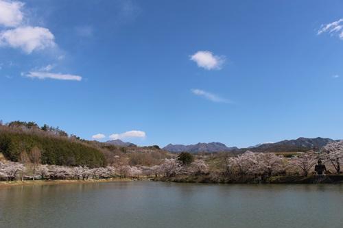 矢木羽湖5