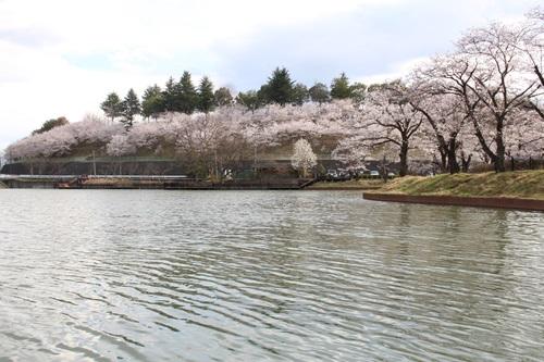 矢木羽湖14